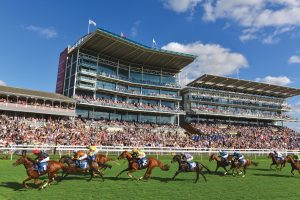 Cleeve Racing's 2018 Royal Ascot Notebook Horses