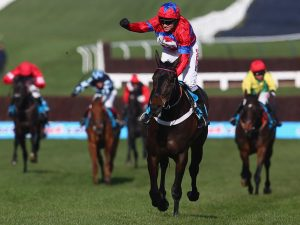 Get your FREE ante post Cheltenham Yankee worth £3,950…