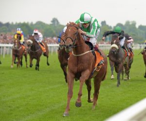 Cleeve members selections – Saturday 14th October