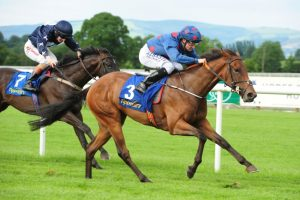 Cleeve members selections – Saturday 30th September