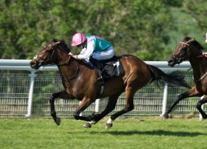 Cleeve members selections – 29th September
