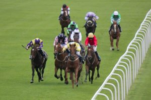Cleeve members selections – Friday 26th October