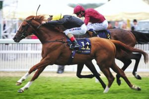 Cleeve members selections – Saturday 21st October