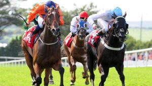 Cleeve members selections – Friday 13th October