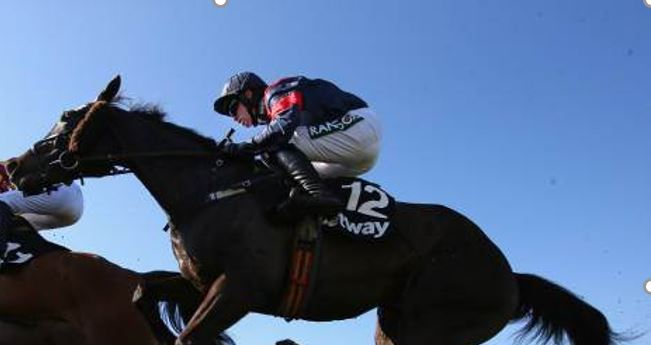 Cleeve Notebook horses - w/e 11th December - Cleeve Racing