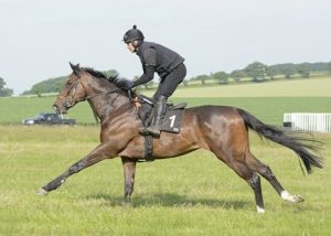 Cleeve Notebook Horses – w/c 22nd Jan