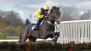 Supreme Champion Hurdle ante post selection