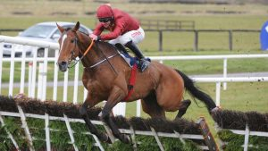 Cleeve members selections – Punchestown Day 4