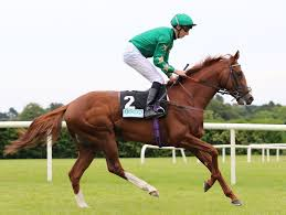 Cleeve Racing members selections – Thursday 8th August