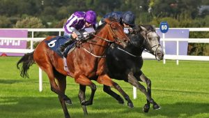 Cleeve members selections – Saturday 20th October