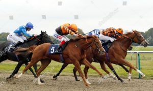 Cleeve members selections – Wednesday 10th October