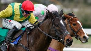 Cleeve members antepost selection – Stayers Hurdle
