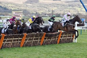 Supreme Novice Hurdle 2020