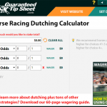 Horseracing Punter resources - Dutching Calculator